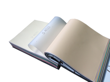 Folia z systemem harpun, satynowa kolor S511