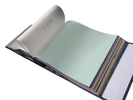 Folia z systemem harpun, satynowa kolor S604